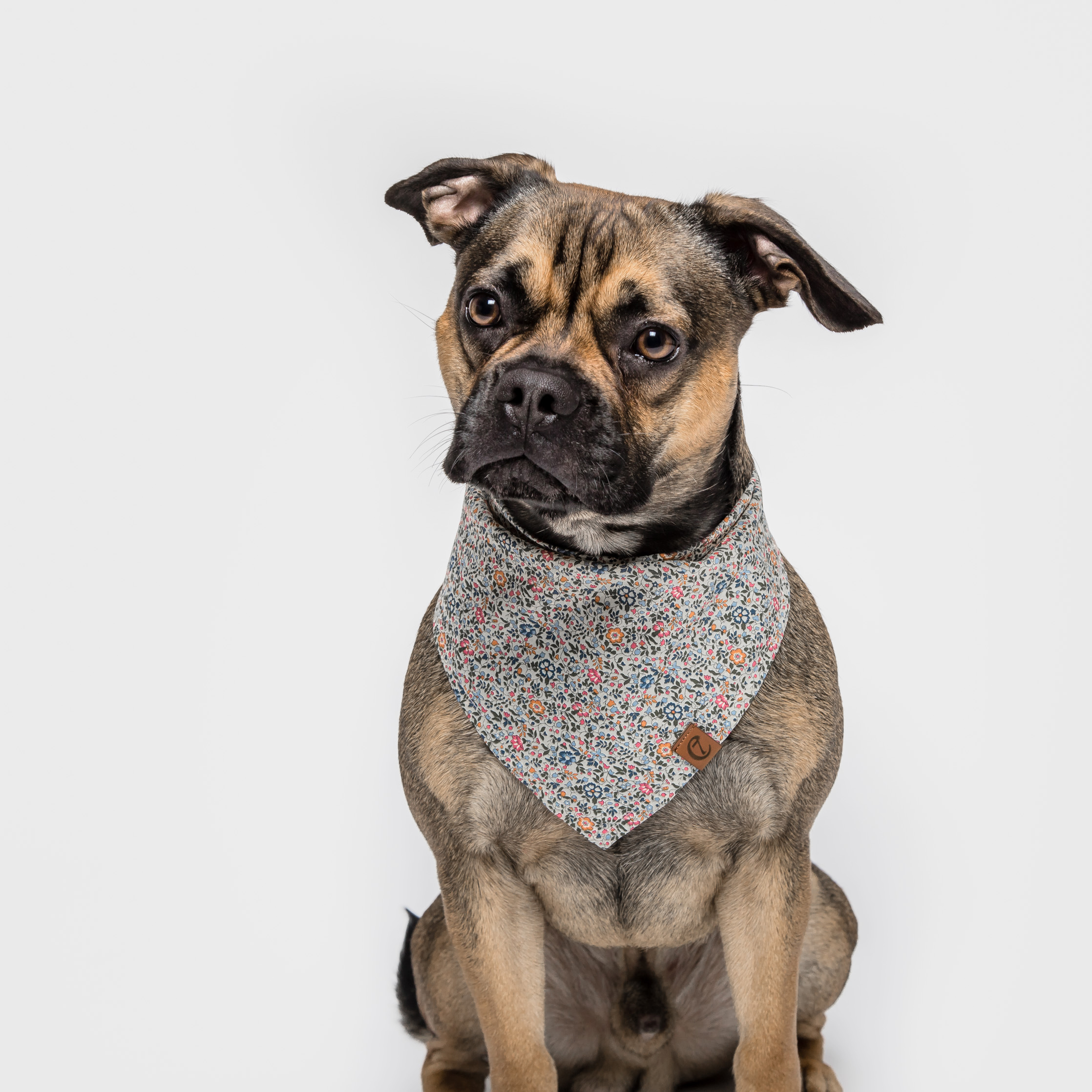 Cloud7-Dog-Bandana-Liberty-Millefleurs-Dog