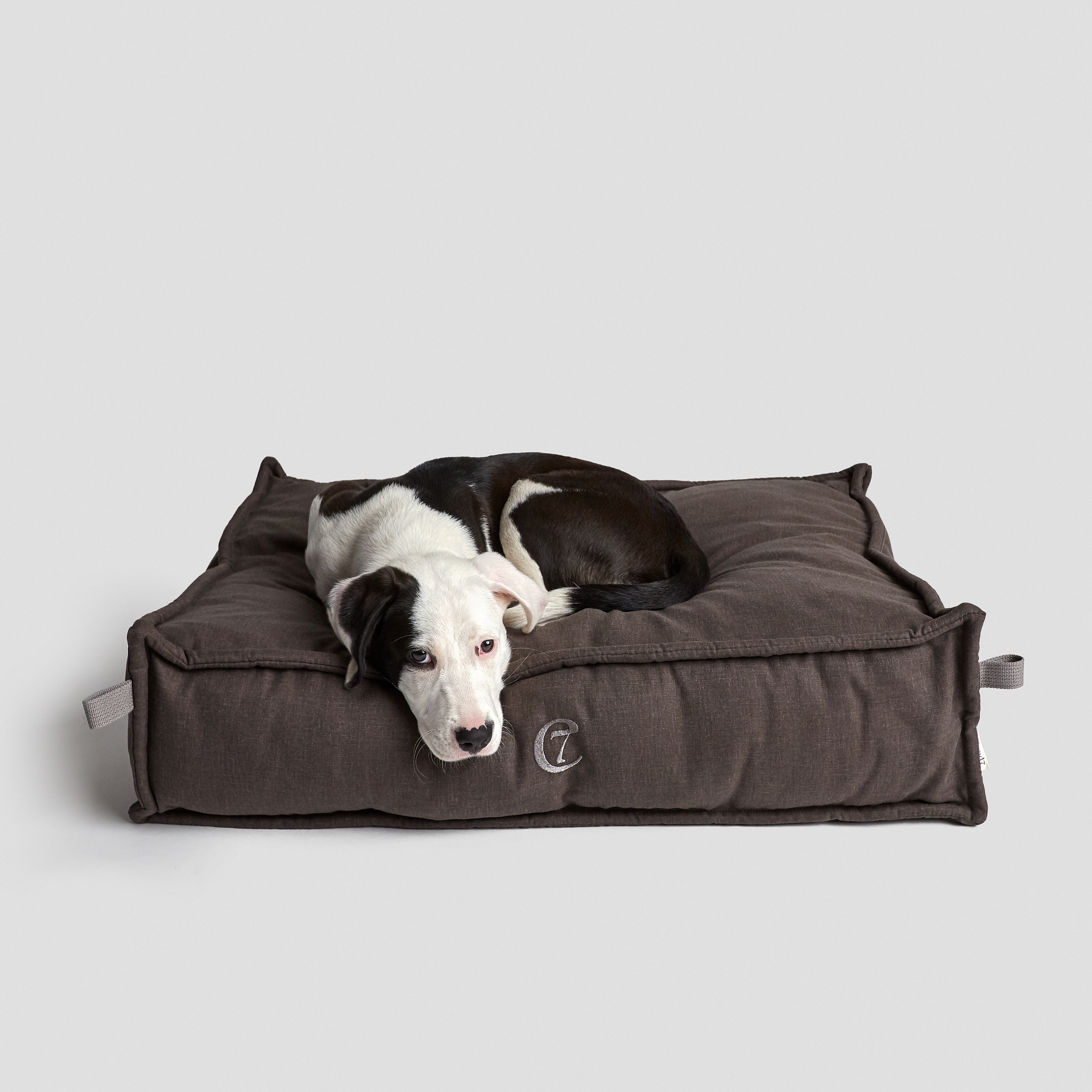 Cloud7-Dog-Bed-Cozy-Mocca-Dog-5