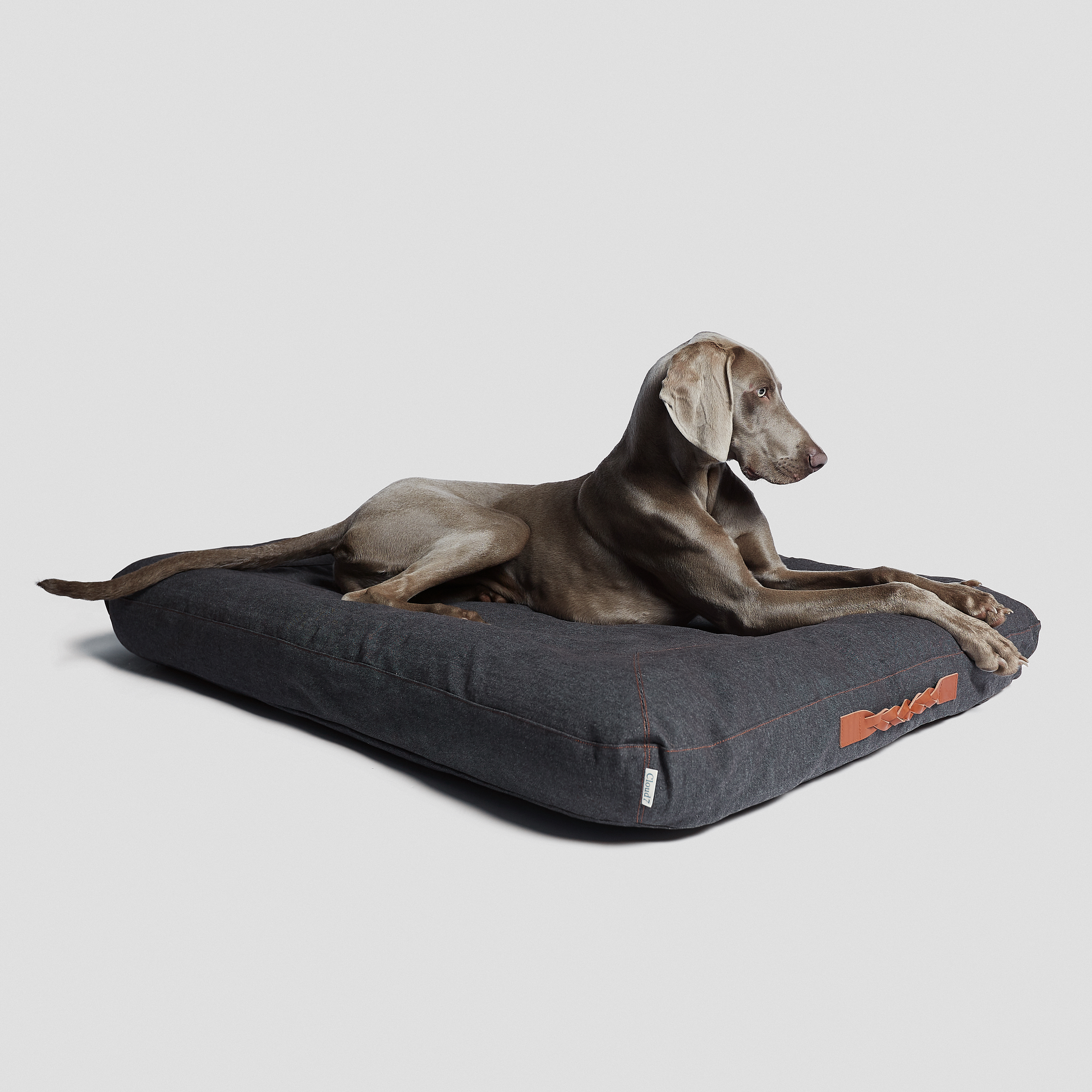 Cloud7-Dog-Bed-Dream-Heather-Brown-Dog-1